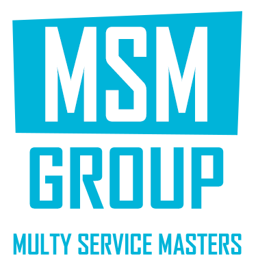 Msm group logo in header section